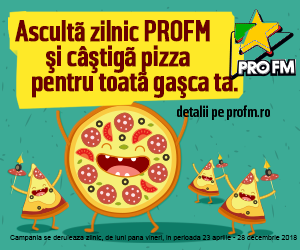 ProFM Pizza